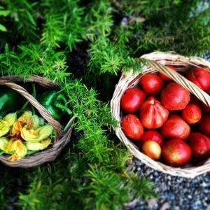 home_slider_foto_pomodori